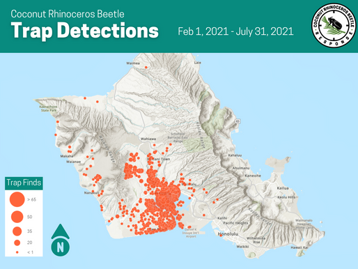 6 Month Detections Map (Feb-July 2021)