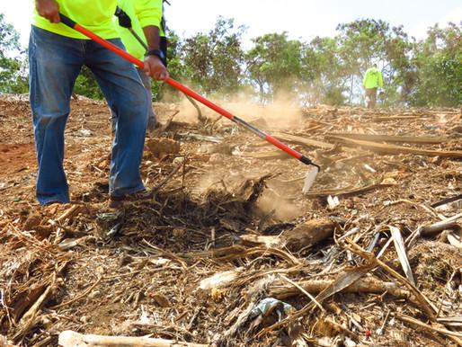 Green Waste Management Guidelines- 2021