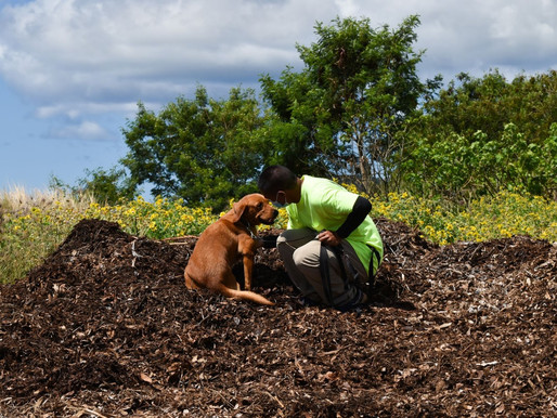 Canines expand the abilities of CRB Response team (June 2021 Newsletter)