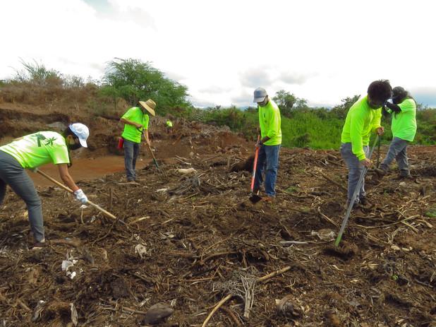 Team mulching