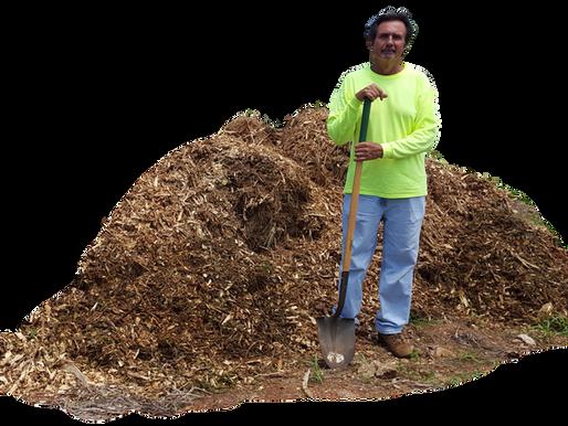 Safe Composting Tips