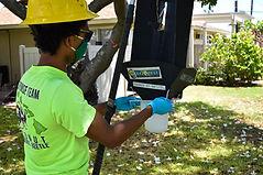 CRB Response crew checks traps.jpg