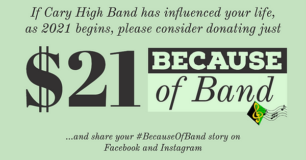 BecauseOfBand Facebook.png