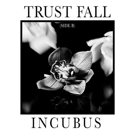 """""""Trust Fall"""" Incubus Album Cover"""