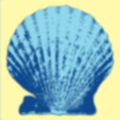 JP scallop yellow 2.png