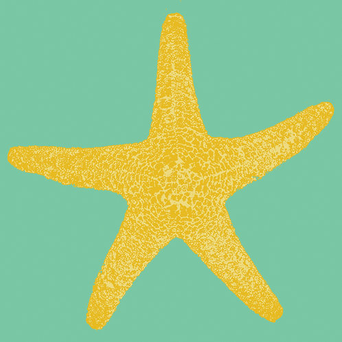 Julie Pritchard 'Starfish'