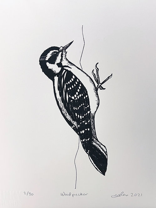 Alexandra Leaver 'Woodpecker'