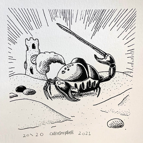 Colin Campbell 'Knight Crab'