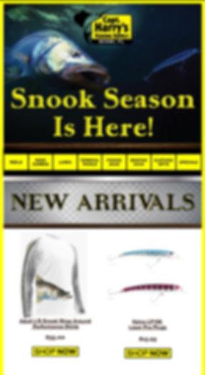snook-season-is-here-capt-harrys.jpg