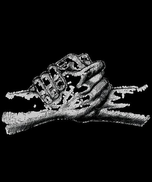 AdobeStock_hands.png