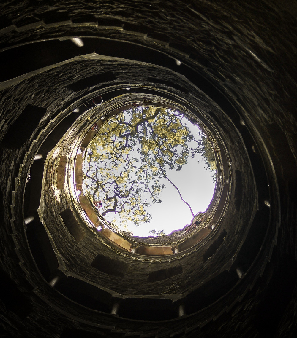 Camera is looking up from the bottom of a well. The walls spiral around and look like they may have steps going up. At the opening of the well, tree branches reach across a light blue sky.