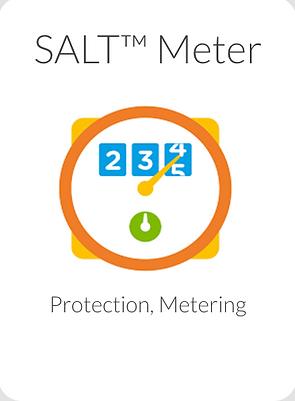 SALT Meter.png