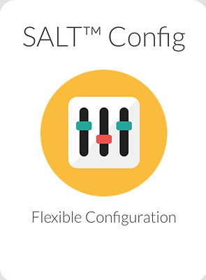 SALT Config.png