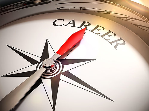 Career Development Planning - PDF Version
