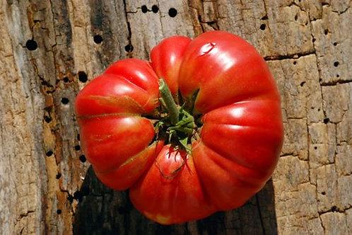 """Tomates """"Mémé de Beauce"""""""