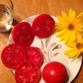 """Tomates """"Plourdes"""""""