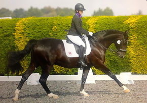MickyDressage - Home Internationals 04.j