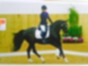 MickyDressage Senior Home Internationals