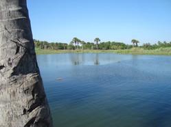 Laguna el plan en Pichacúa la isla