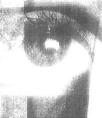 vi-photocop.jpg