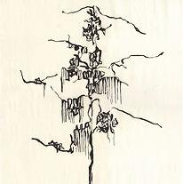 06-02.jpg