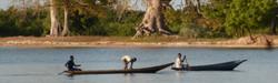 pirogues & baobabs