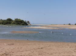 bancs de sable