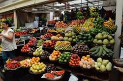 le marché de Funchal