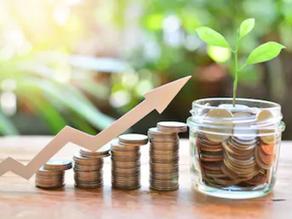 How to ensure the sustainability of investments