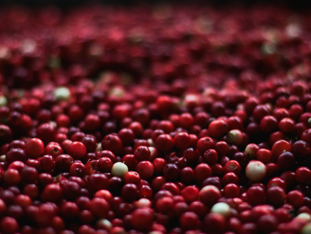 Cranberry Seed Oil: The Superfood For Your Skin