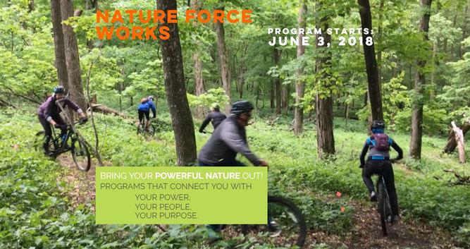 NatureForceWorks.com website build
