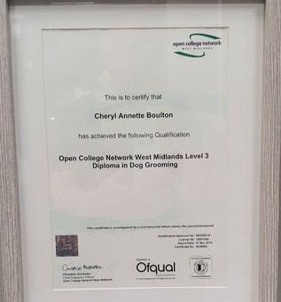 Aiming high, Qualified OCN Level 3 2019