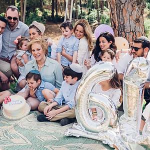 Shapiro Family