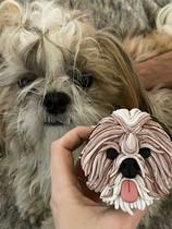 Puppy Cupckae