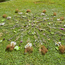 ustvarjanje cvetlične mandale