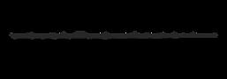 logo.psd 2.png