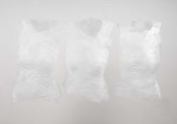 Katrin Freitag silk torso.jpg