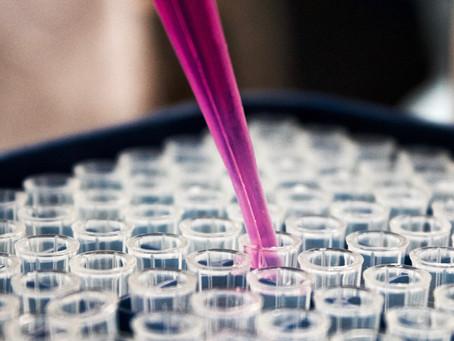 Neue Forschung: Kann eine Reprogrammierung von Zellen unser Leben verlängern?