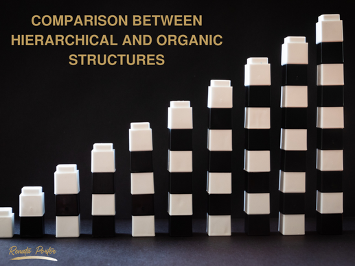 Complete Comparison Between Hierarchical and Organic Structures