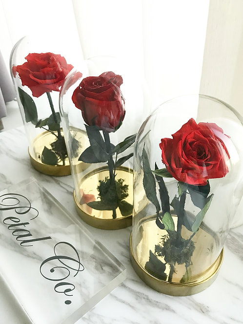 The Enchanted Rose (S size)
