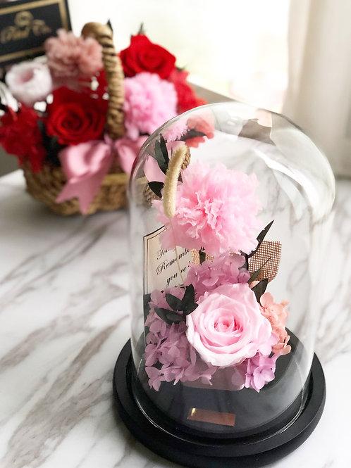 Carnation rosy 💕