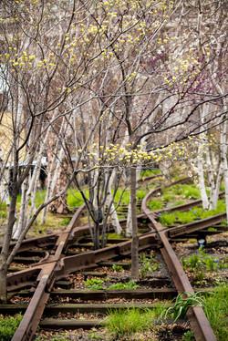 Old Tracks