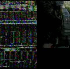 dvd city 11 shogun.mp4