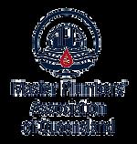mpaq_logo.png