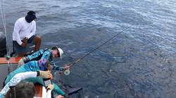 Pat Ford Galapagos Marlin Fishing