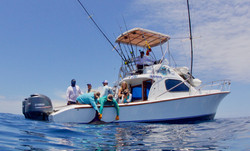Galapagos Marlin Fishing