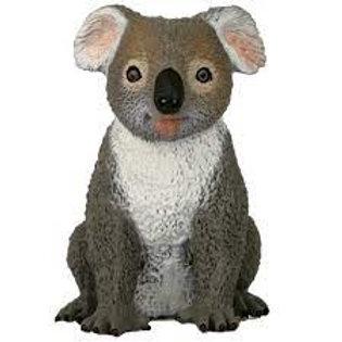 Large Australian Koala