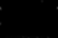 pro-non-logo_mid-black-transparent.png