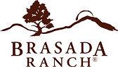 br_-_brown_logo_trademark-1_2033dc112934