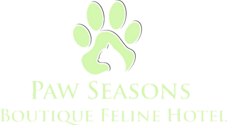 Paw Seasons Boutique Feline hotel cat luxury all inclusive cat hotel Ilkley Serenity